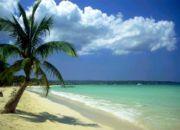 jamaica_removal
