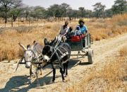 mover_namibia